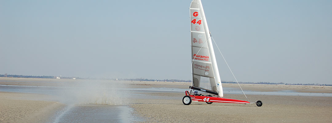 Internationale Regatta der Strandsegler